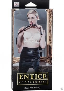 Entice Accessories Open Mouth Gag