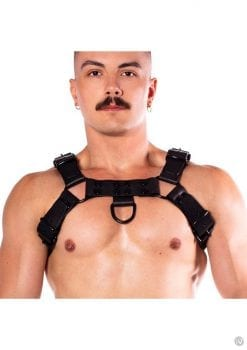 Prowler Red Noir Harness Prem Blk Md