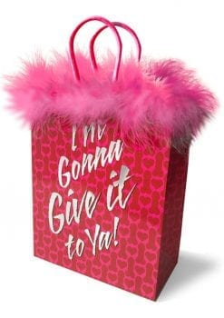 I`m Gonna Give It To You Gift Bag Red/Pink